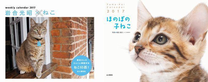 """毎年大好評!ヤマケイ""""猫""""のカレンダー2017~週めくり「岩合Xねこ」「なごみ猫」「ほのぼの子ねこ」「古ねこ」「猫と花」など。"""