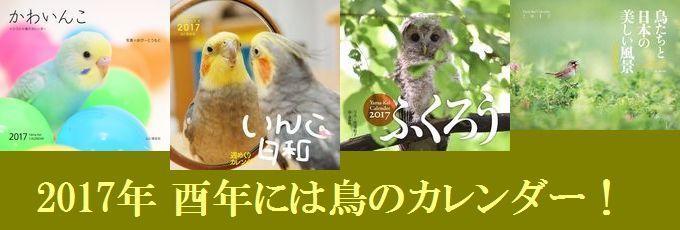 2017年 酉年には鳥のカレンダー!