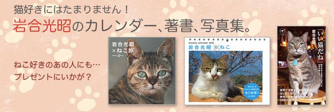 岩合光昭氏著書~「いい猫だね」「週めくり 岩合Xねこ 卓上カレンダー2016」「岩合光昭Xねこ旅」