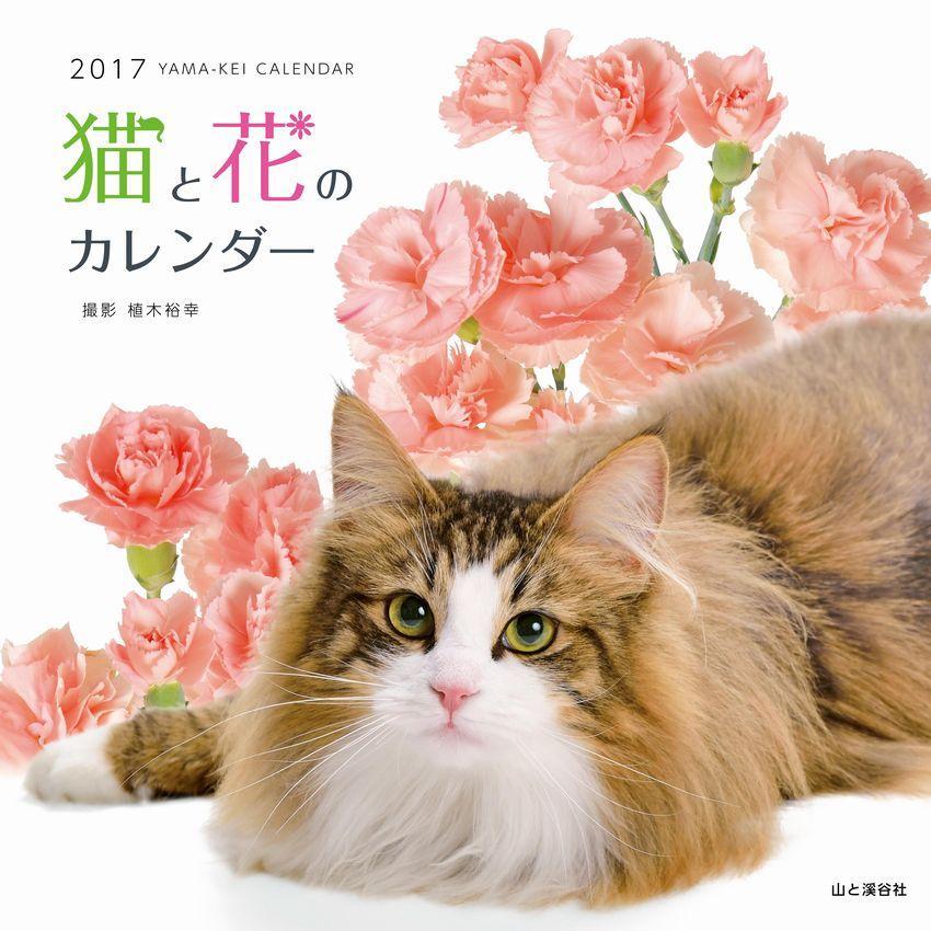 http://www.yamakei.co.jp/news/9784635852555_s.jpg