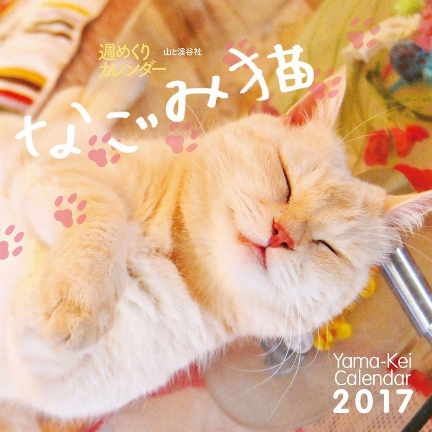 http://www.yamakei.co.jp/news/9784635852586_s.jpg