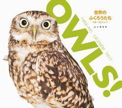 http://www.yamakei.co.jp/news/OWLS_Calendar.jpg